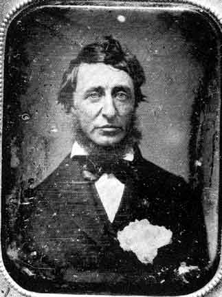 throeau essays Thoreau's essay walking grew out of journal entries developed in 1851 into two  lectures, walking and the wild, which were delivered in 1851 and 1852,.